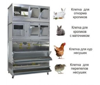 """Домашняя Ферма 2"" стандарт"