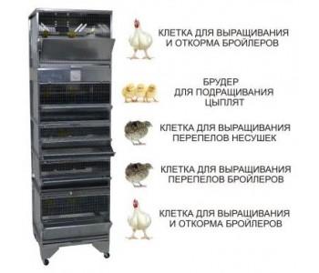 """""""Домашняя Ферма 6"""" премиум"""