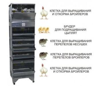 """""""Домашняя Ферма 6"""" престиж"""