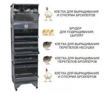 """Домашняя Ферма 6"" стандарт"