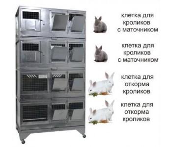 """""""Домашняя Ферма 7"""" премиум"""