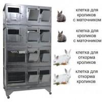 """""""Домашняя Ферма 7"""" престиж"""