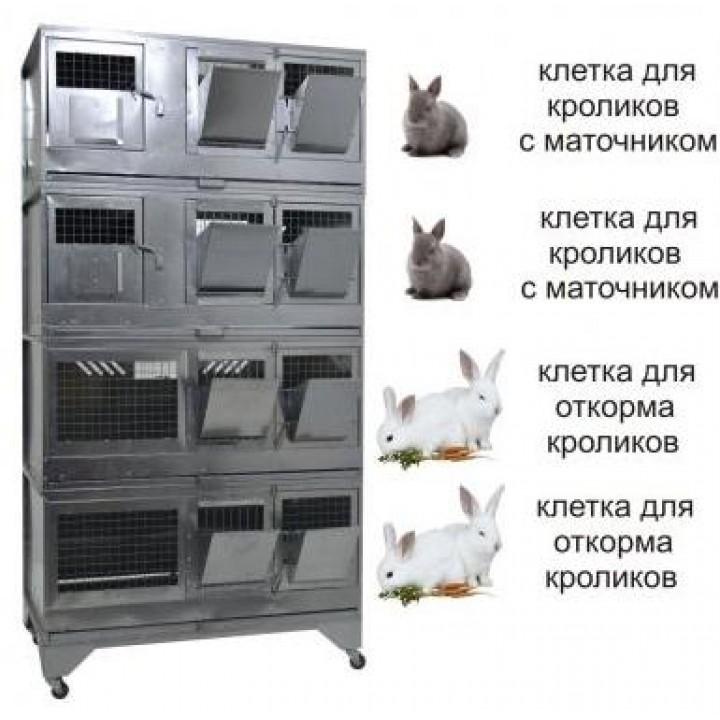 """""""Домашняя Ферма 7"""" престиж купить"""