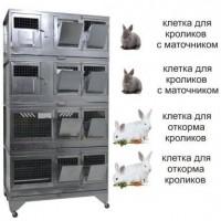 """Домашняя Ферма 7"" стандарт"