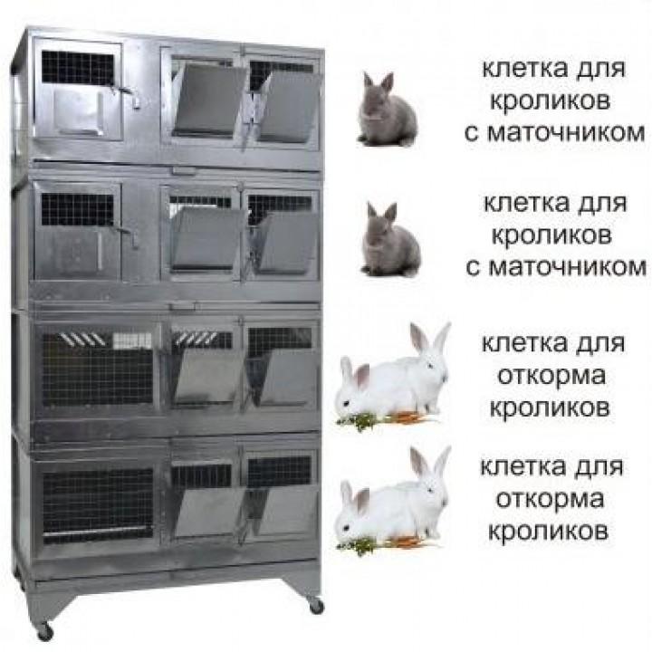 """Домашняя Ферма 7"" стандарт купить"