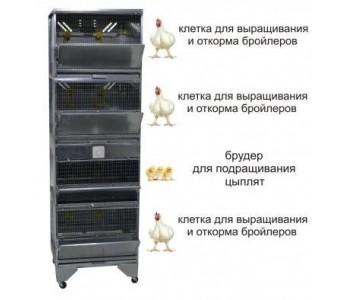 """""""Домашняя Ферма 5"""" премиум"""