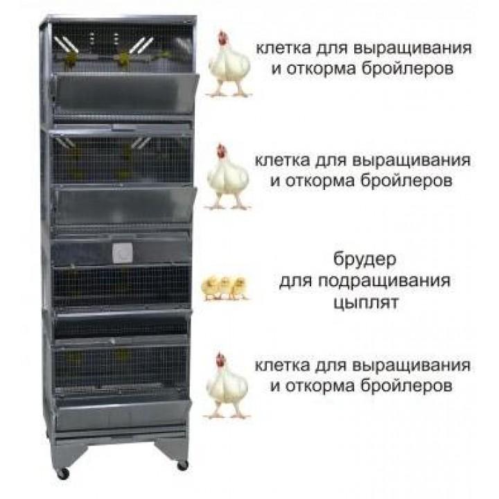 """""""Домашняя Ферма 5"""" премиум купить"""