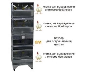 """""""Домашняя Ферма 5"""" престиж"""
