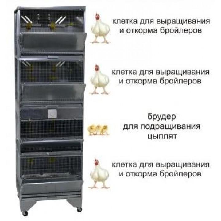 """Домашняя Ферма 5"" стандарт купить"