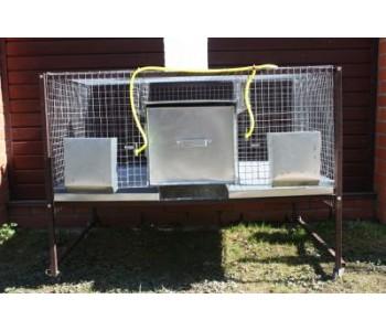 Клетка для кроликов 2-1 с маточниками