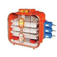 Инкубатор Covatutto 162 автоматический цифровой