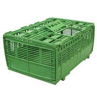 Ящик для транспортировки птиц 53х38х24 см пластик зеленый