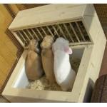 Кормушки для кроликов купить