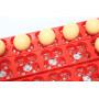 Инкубатор для яиц автоматический И-24